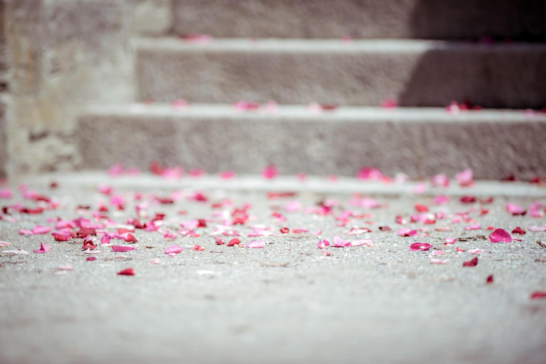 standesamtliche Trauung - Kurschloss am Ammersee - Rosenblüten nach Hochzeit Gruppenfoto